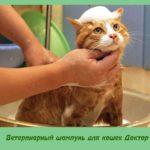 Ветеринарный шампунь для кошек Доктор
