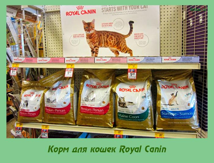 Royal Canin Senior Ageing Sterilised 12+ prix