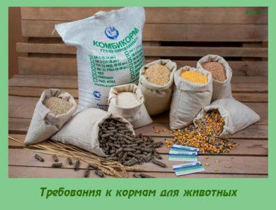 Требования к кормам для животных