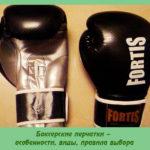 Боксерские перчатки – особенности, виды, правила выбора
