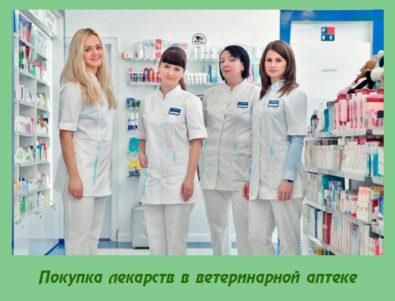 Покупка лекарств в ветеринарной аптеке