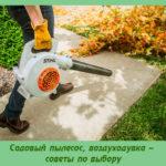 Садовый пылесос, воздуходувка – советы по выбору