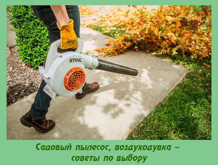 Садовый пылесос, воздуходувка